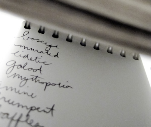 my word notebook