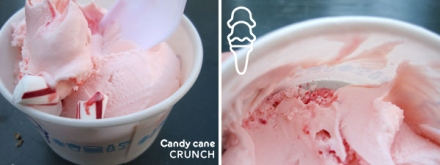 Shake Shack candy cane custard rating = double scoop
